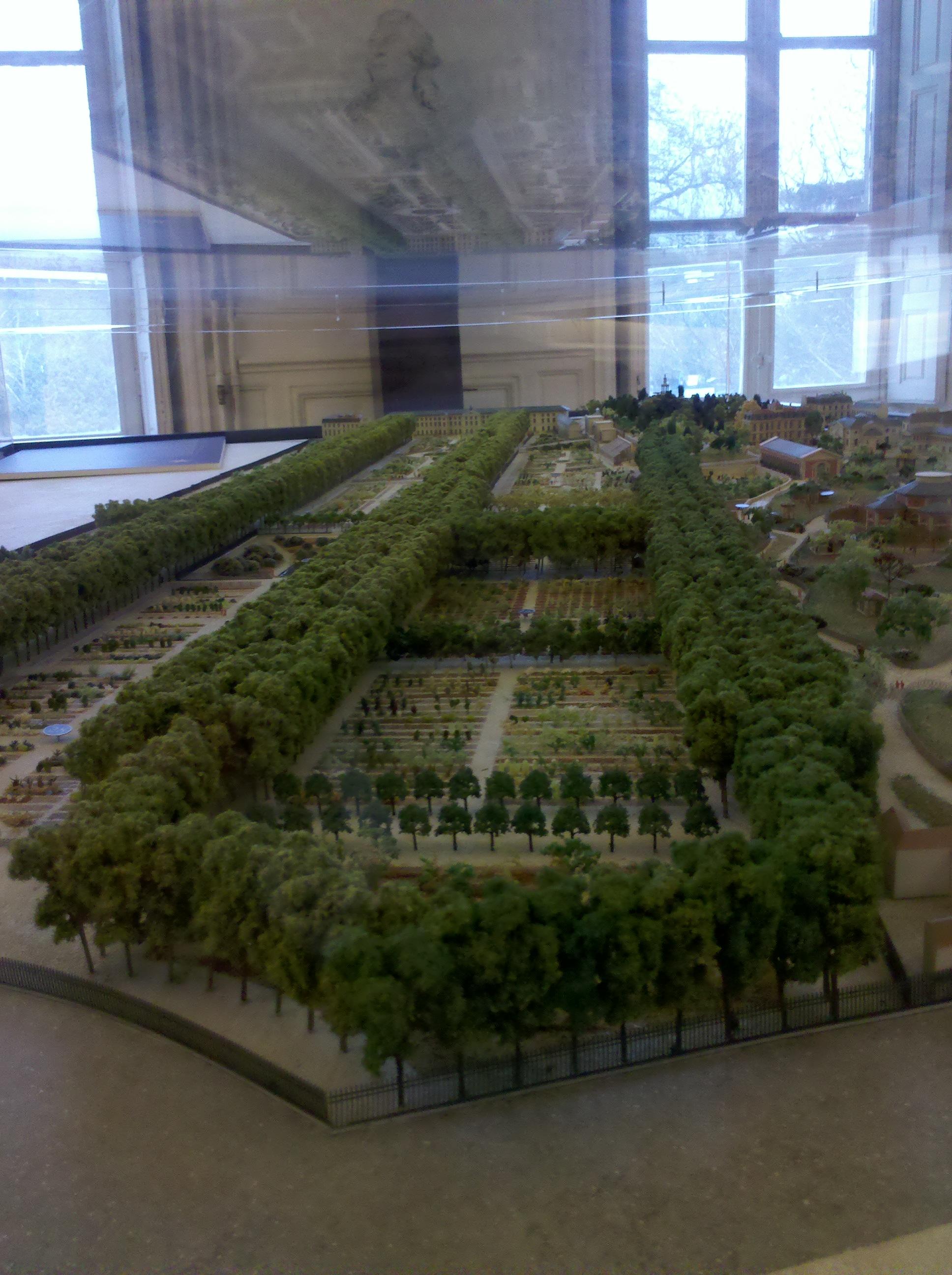 Exposition zarafa au cabinet d histoire du jardin des for Plantes du jardin