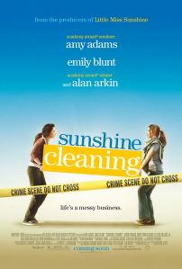 sunshine_cleaning0