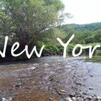 Un petit tour à la campagne... New-yorkaise!