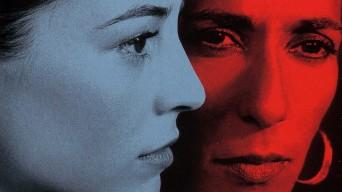 Parle avec Elle, de Pedro Almodovar (2002